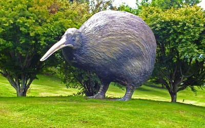Kiwi-Modell