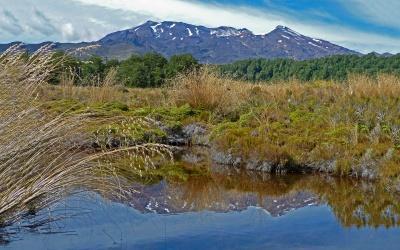 Rund um den Vulkan Mount Tongariro