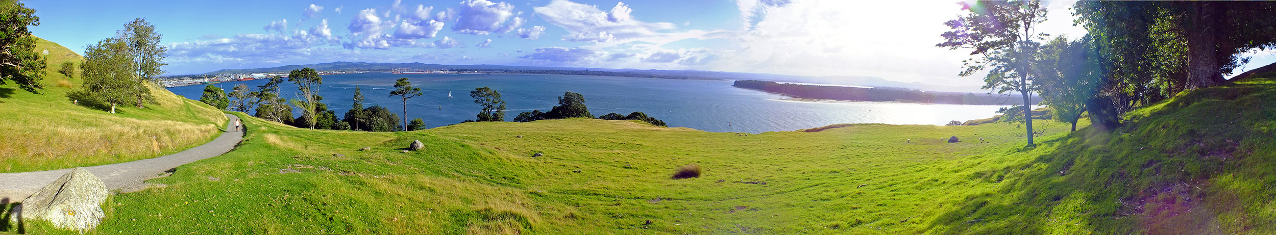 Maunganui Panorama