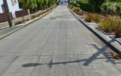 Baldwin Street, die steilste Straße der Welt, in Dunedin