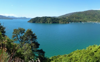Marlborough Sounds @ Norspitze der Südinsel